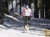 plbm_2011_0101